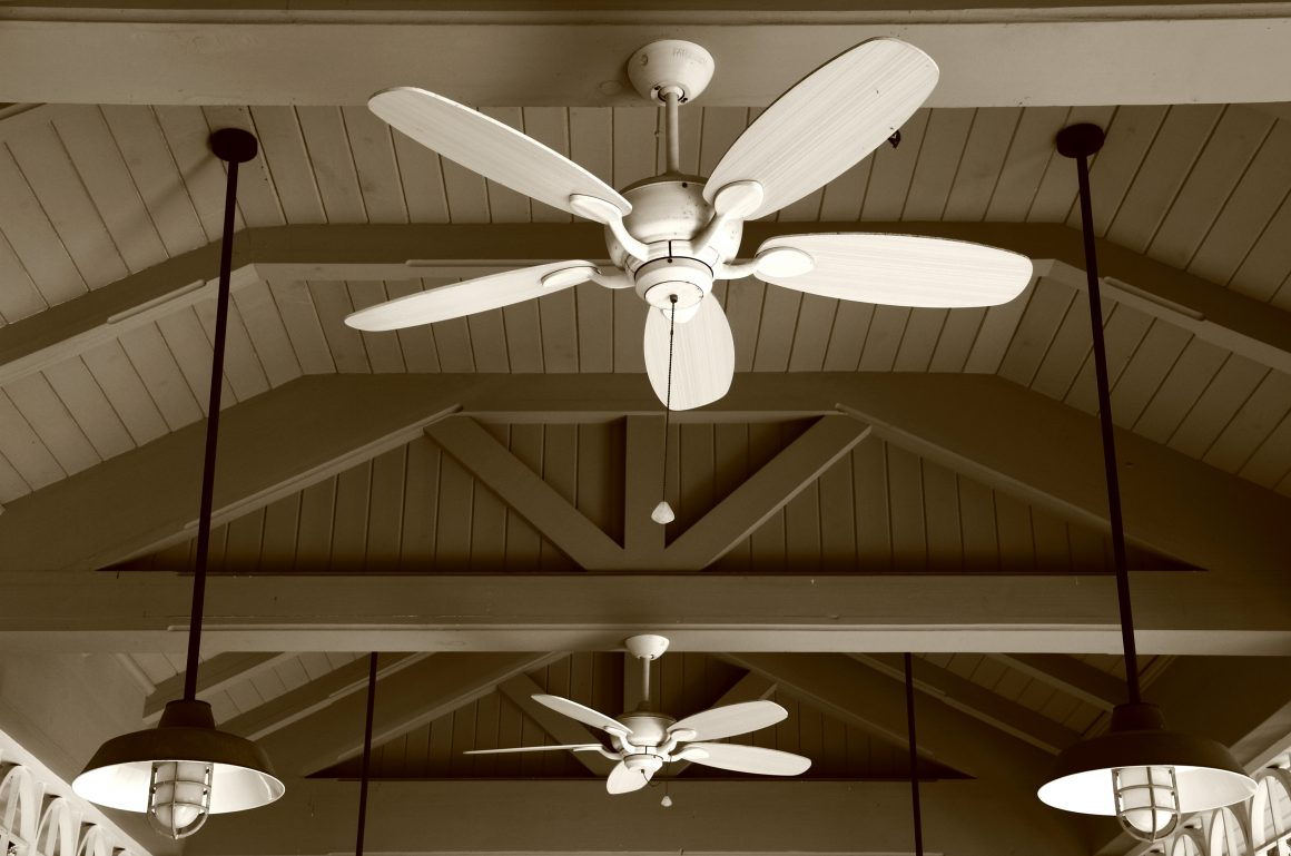 Multiple white ceiling fans installed, next to industrial-looking  pendant lighting fixtures